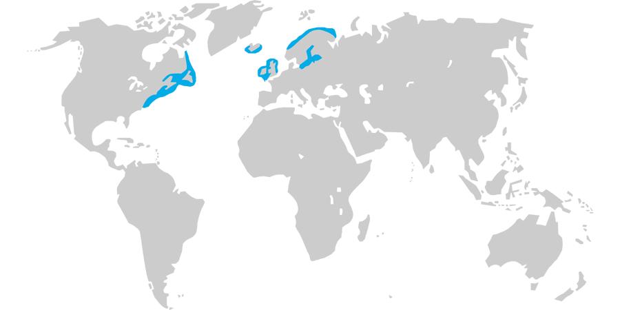 Map of grey seal range